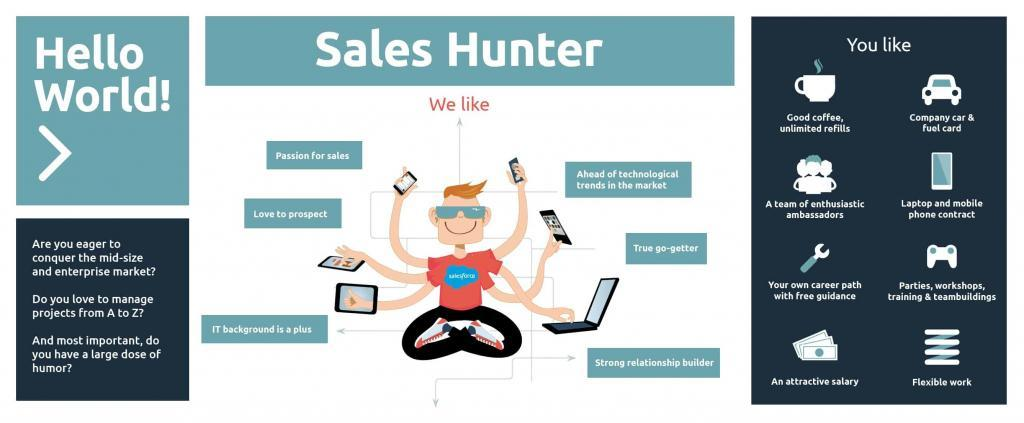 Career Sales Hunter